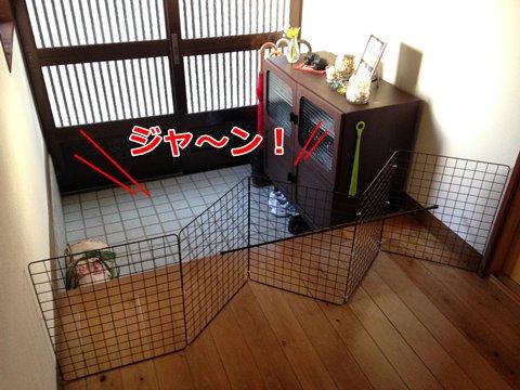 猫 脱走防止対策2