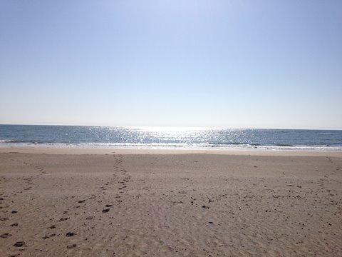 浜辺 朝日