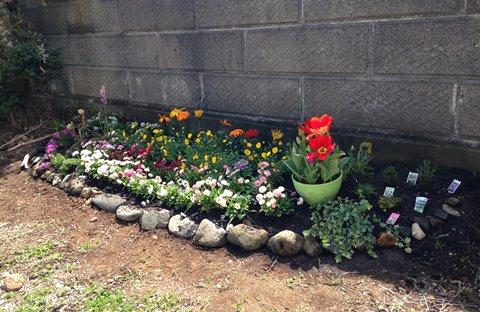 花壇 ガーデニング