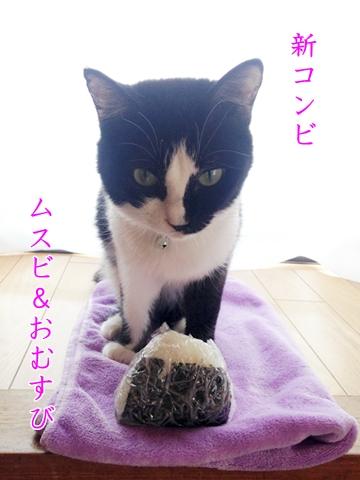 猫ムスビとおむすび