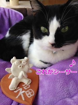 猫とシーサー