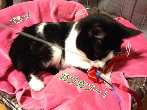 猫おもちゃ手作りリボン