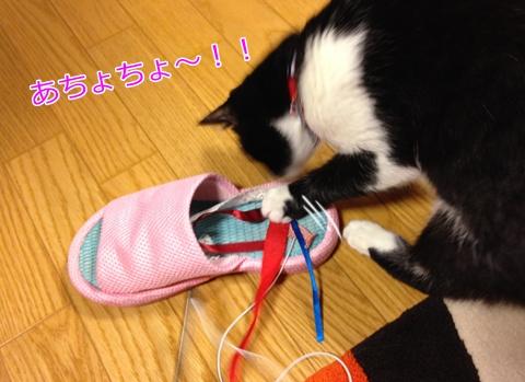 猫スリッパ好き