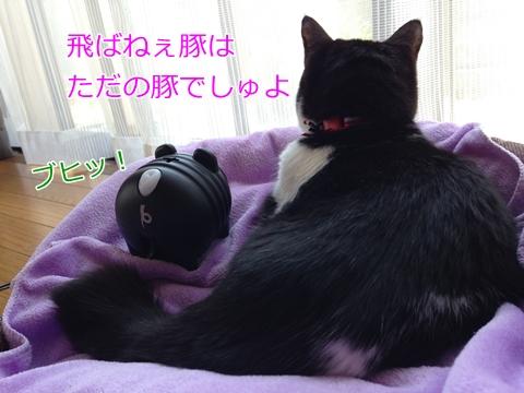 猫蚊取りアースノーマット
