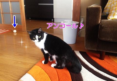 猫トイレットペーペーおもちゃ