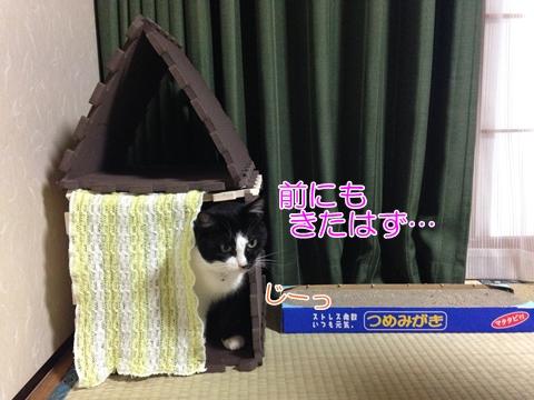 猫ハウス手作り