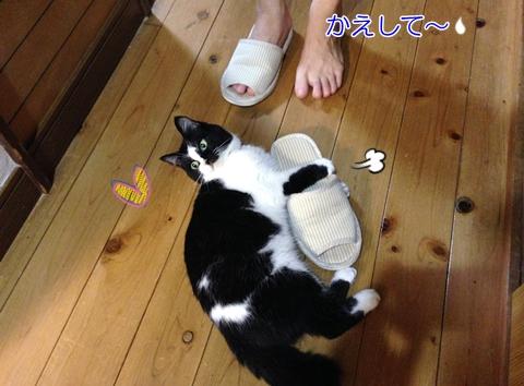 猫スリッパ大好き