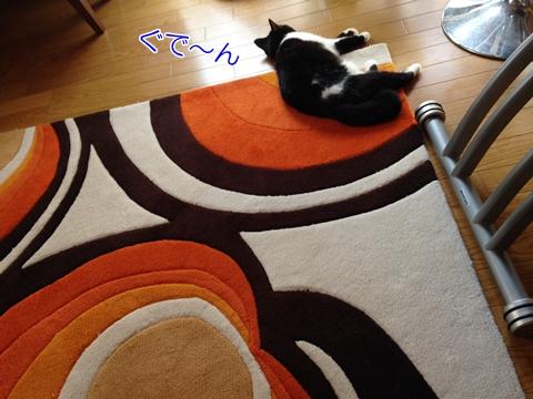 猫じゅうたん寝る