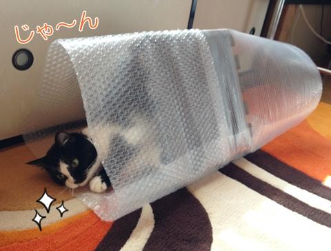 猫ムスビの大好きな手作りトンネルおもちゃ