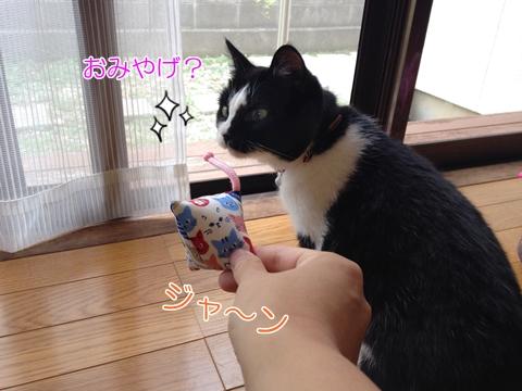 猫またたびおもちゃ効果危険