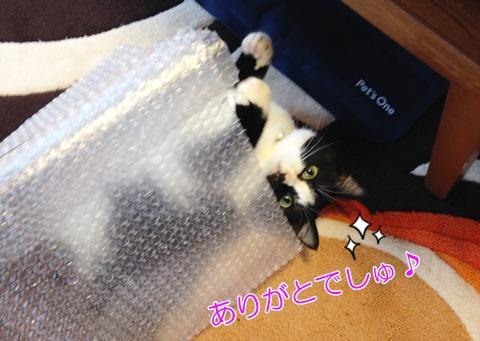 猫手作りトンネルおもちゃの作り方