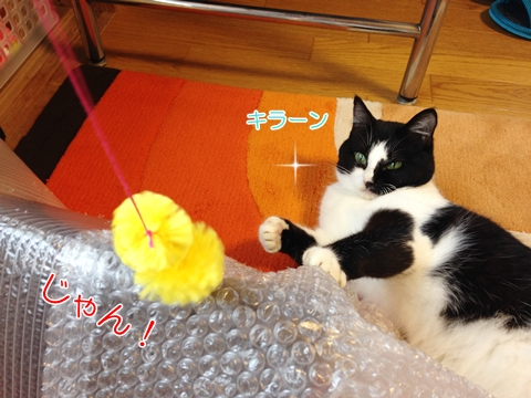 猫の大好きなおもちゃ手作り