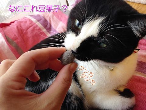 猫毛玉ボール手作り