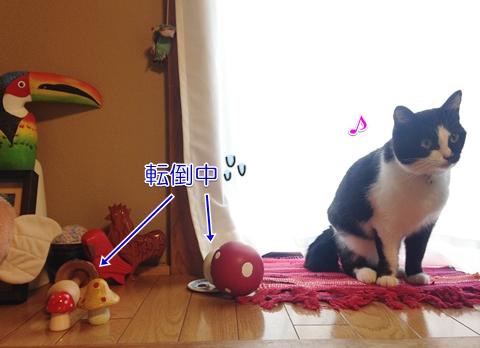 なぎ倒す猫