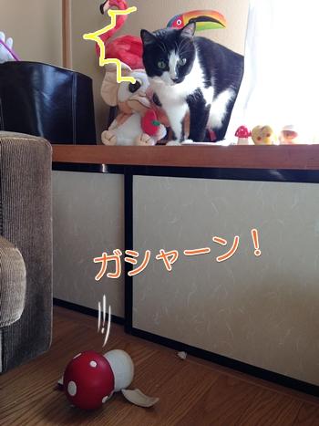 猫が物を落として割る