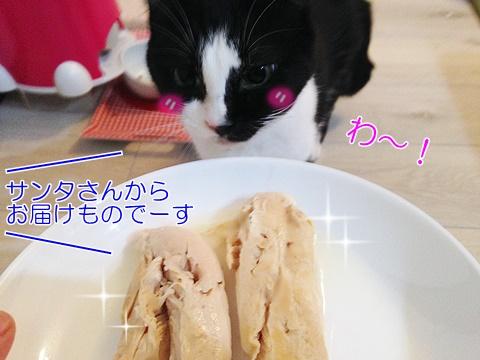 猫のおやつささみ生か茹でるか