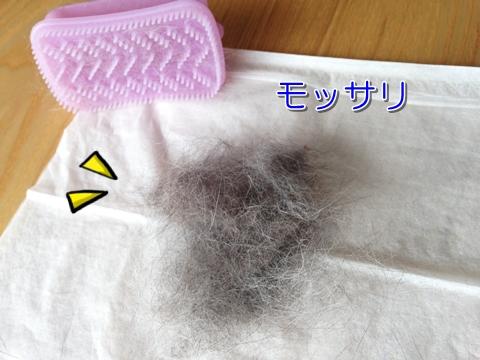 猫 毛玉ボール 毛の量