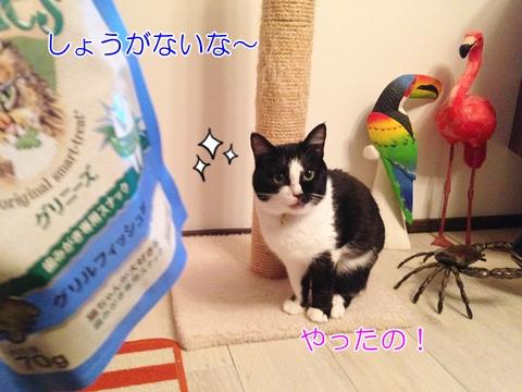 猫歯磨きおやつグリーニーズ