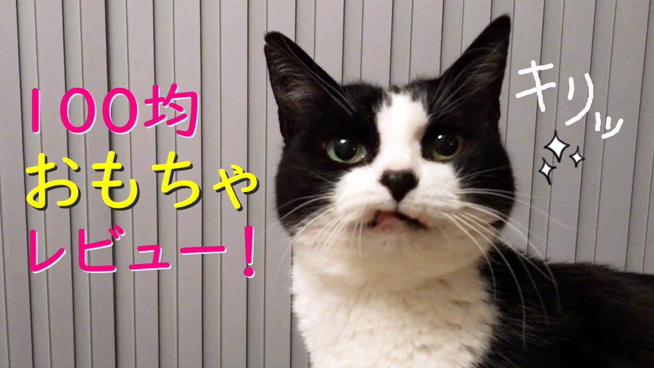 猫おむさんの100均おもちゃレビュー!とシンガポールチキンライス