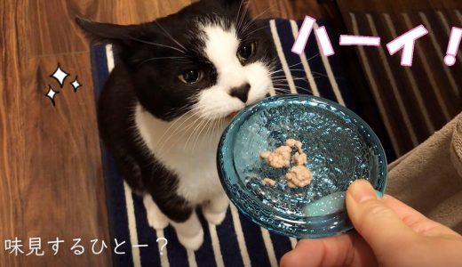 Omu's kitchen【四川風汁なし担々麺】助手おむすびさん活躍中^^