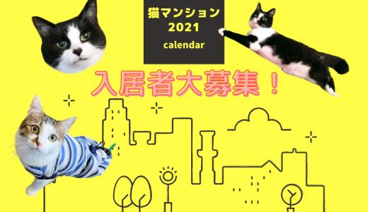 ★2021年チャリティカレンダー【猫マンション2021】入居猫さん大募集!